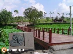 白河蓮花公園(賞蓮花)